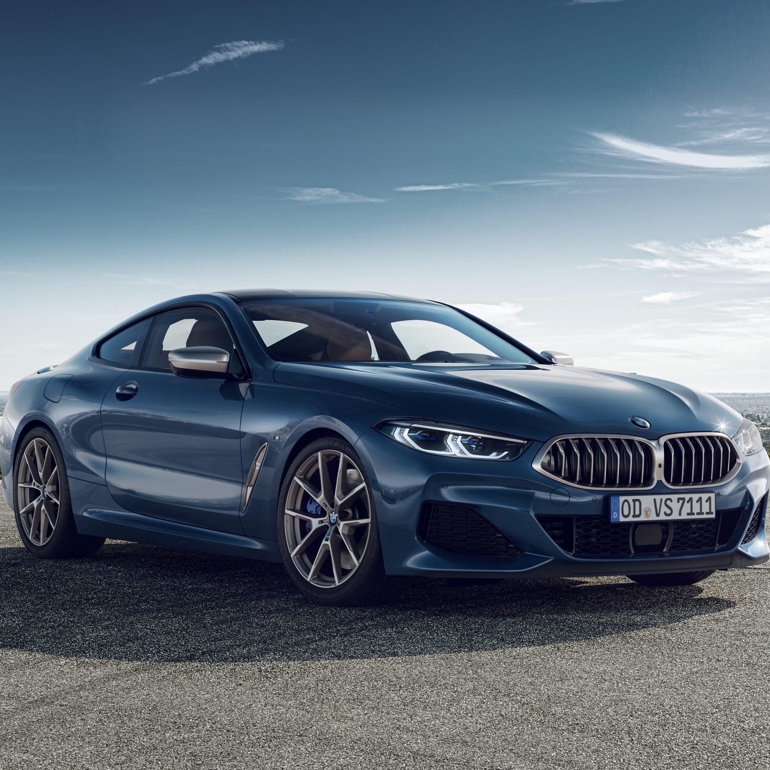 BMW 850i – Maground Backplate